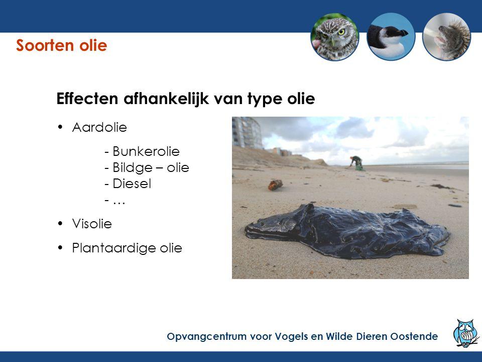 Effecten afhankelijk van type olie