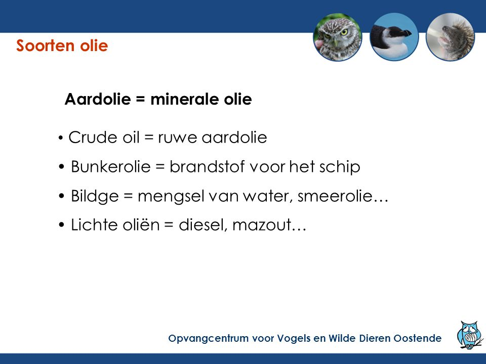 Aardolie = minerale olie
