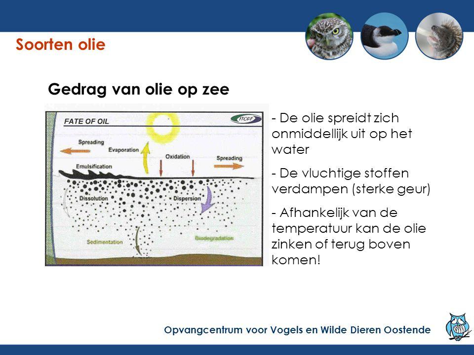 Soorten olie Gedrag van olie op zee