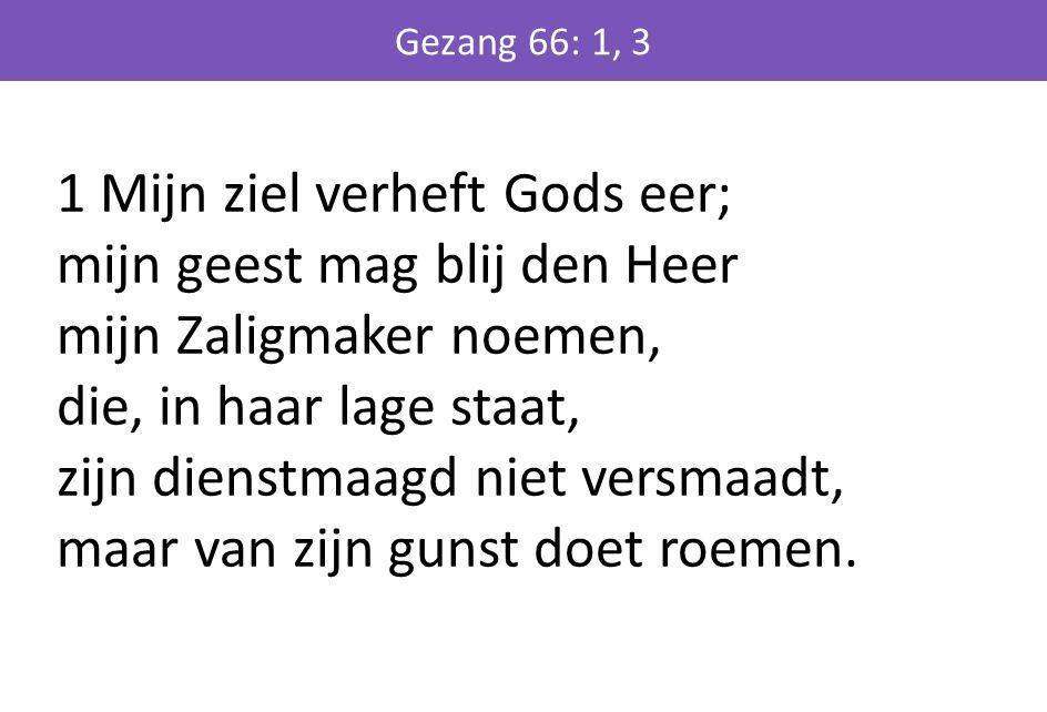1 Mijn ziel verheft Gods eer; mijn geest mag blij den Heer