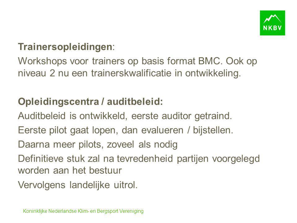 Trainersopleidingen: Workshops voor trainers op basis format BMC