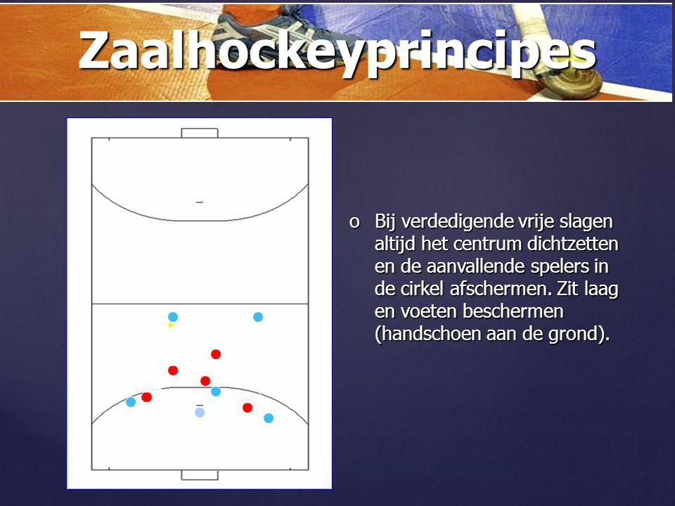 Zaalhockeyprincipes