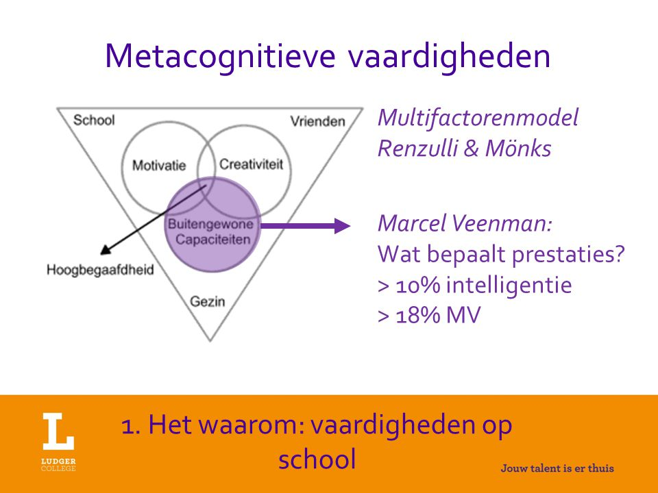 Metacognitieve vaardigheden