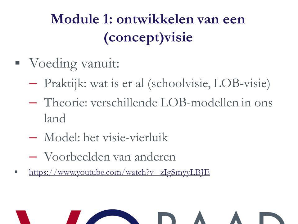 Module 1: ontwikkelen van een (concept)visie