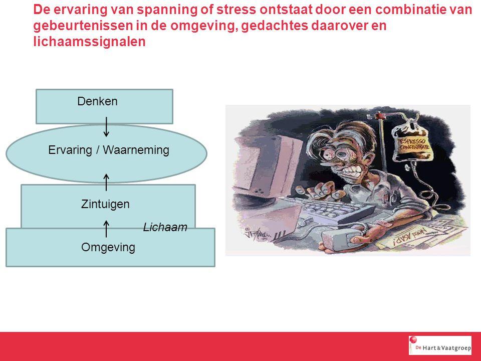 De ervaring van spanning of stress ontstaat door een combinatie van gebeurtenissen in de omgeving, gedachtes daarover en lichaamssignalen