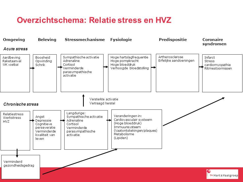 Overzichtschema: Relatie stress en HVZ