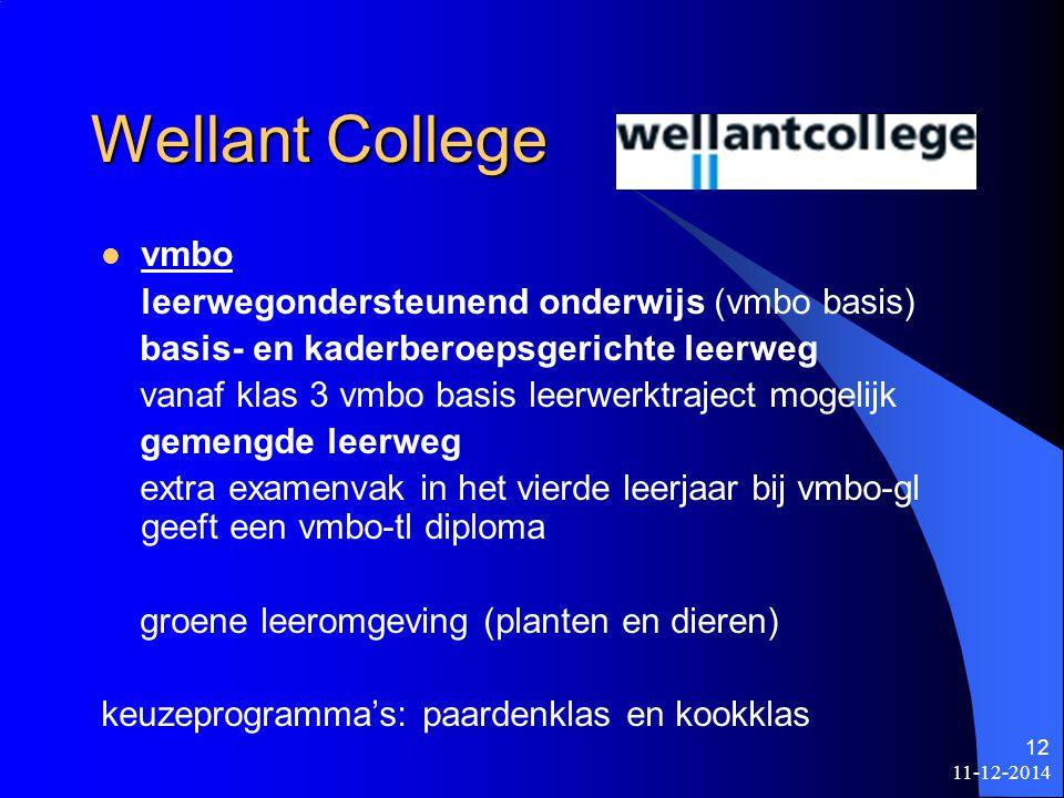 Wellant College vmbo leerwegondersteunend onderwijs (vmbo basis)