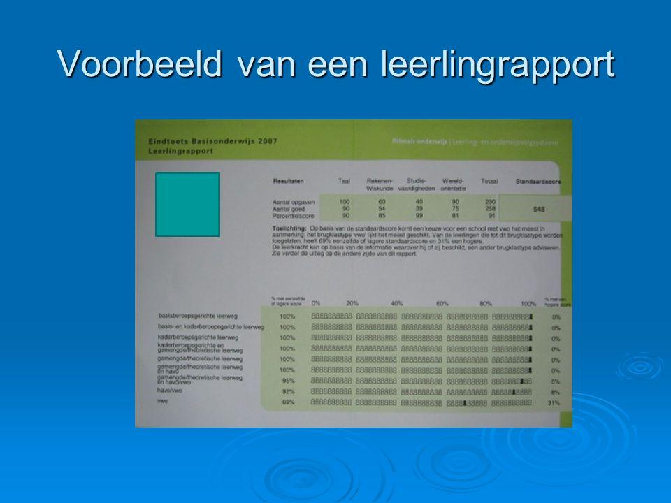 Voorbeeld van een leerlingrapport