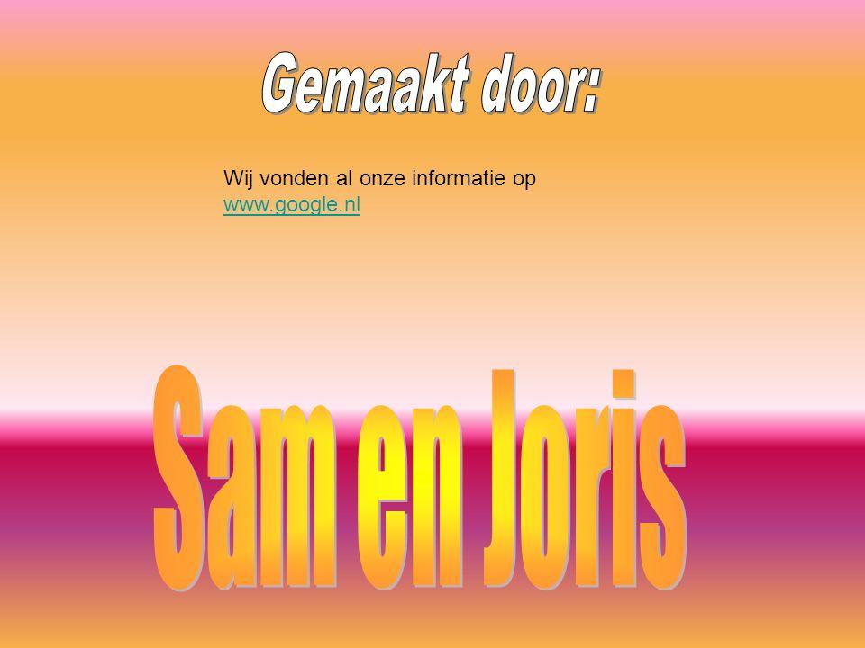 Gemaakt door: Sam en Joris
