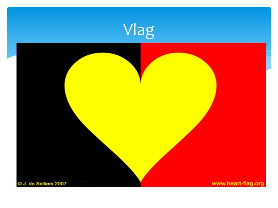 Vlag Het stelde een gouden leeuw voor(geel)voor,op een achtergrond van sabel(zwart),geklauwd en getongd van keel(rood)