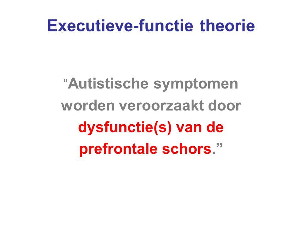 Executieve-functie theorie