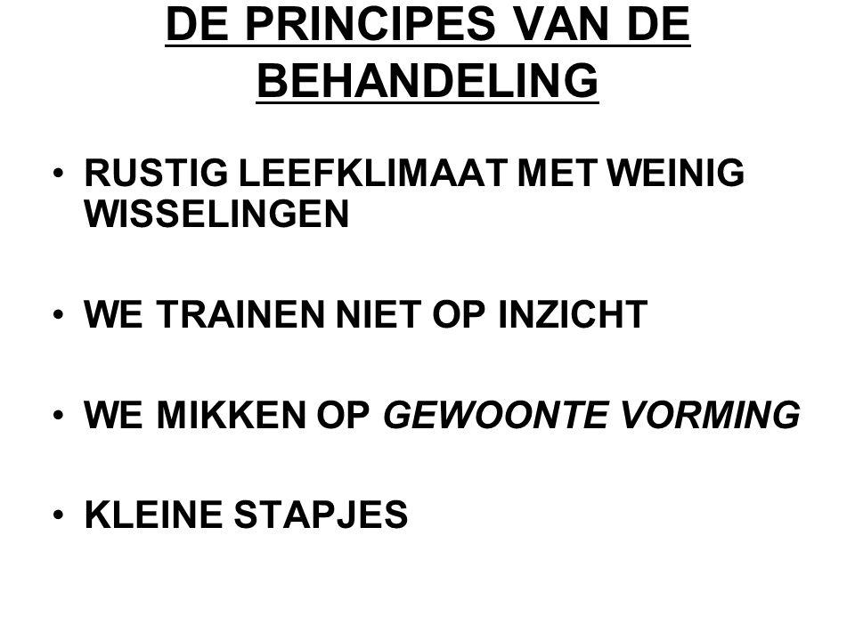 DE PRINCIPES VAN DE BEHANDELING
