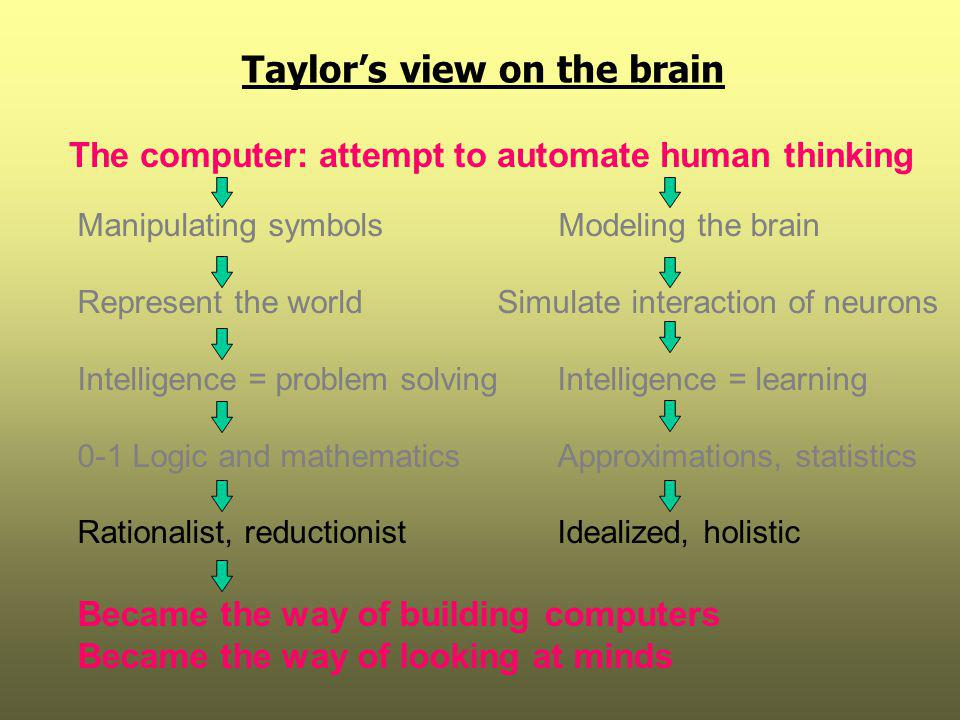 Taylor's view on the brain