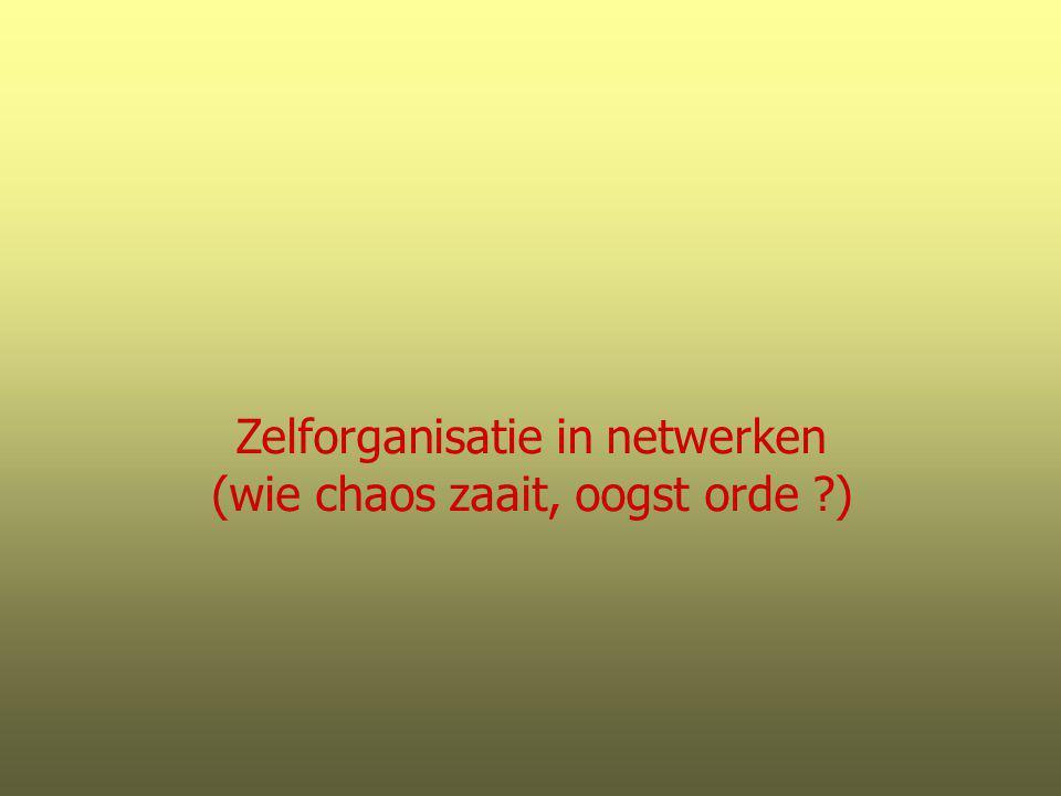 Zelforganisatie in netwerken (wie chaos zaait, oogst orde )
