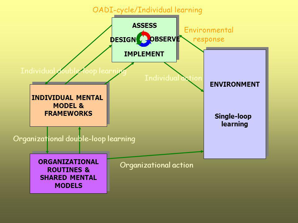 Individual double-loop learning