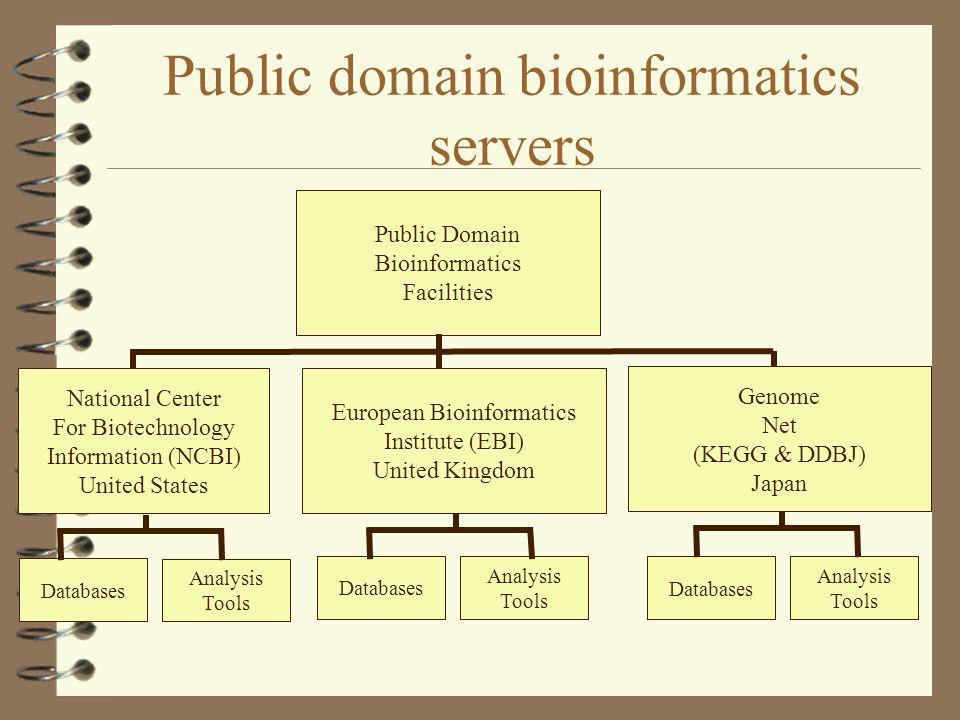 Public domain bioinformatics servers
