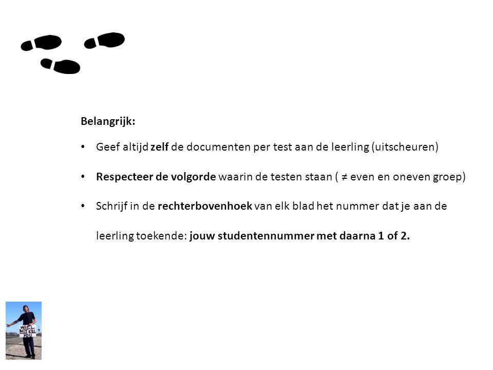 Belangrijk: Geef altijd zelf de documenten per test aan de leerling (uitscheuren)