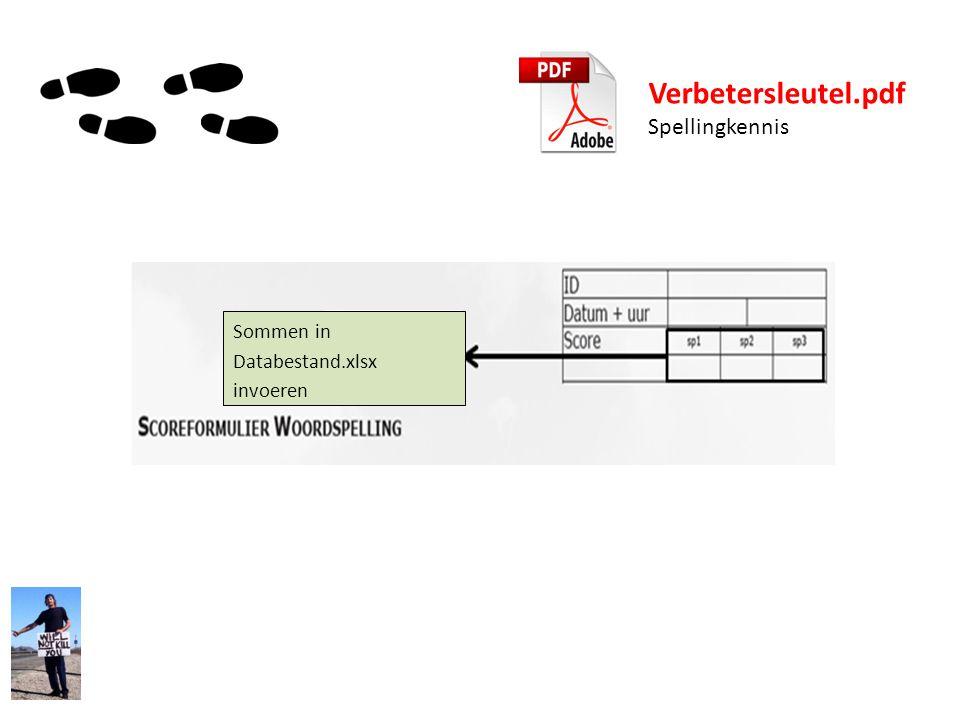 Verbetersleutel.pdf Spellingkennis Sommen in Databestand.xlsx invoeren