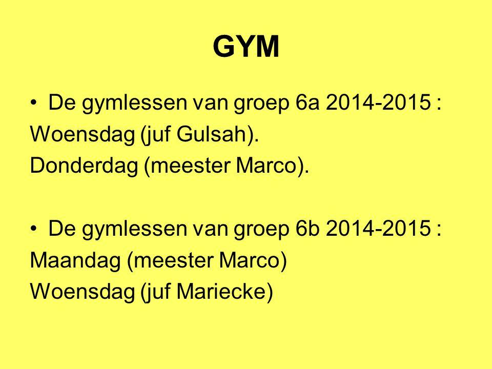 GYM De gymlessen van groep 6a 2014-2015 : Woensdag (juf Gulsah).