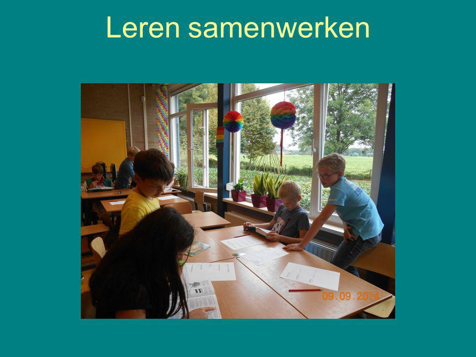 Leren samenwerken