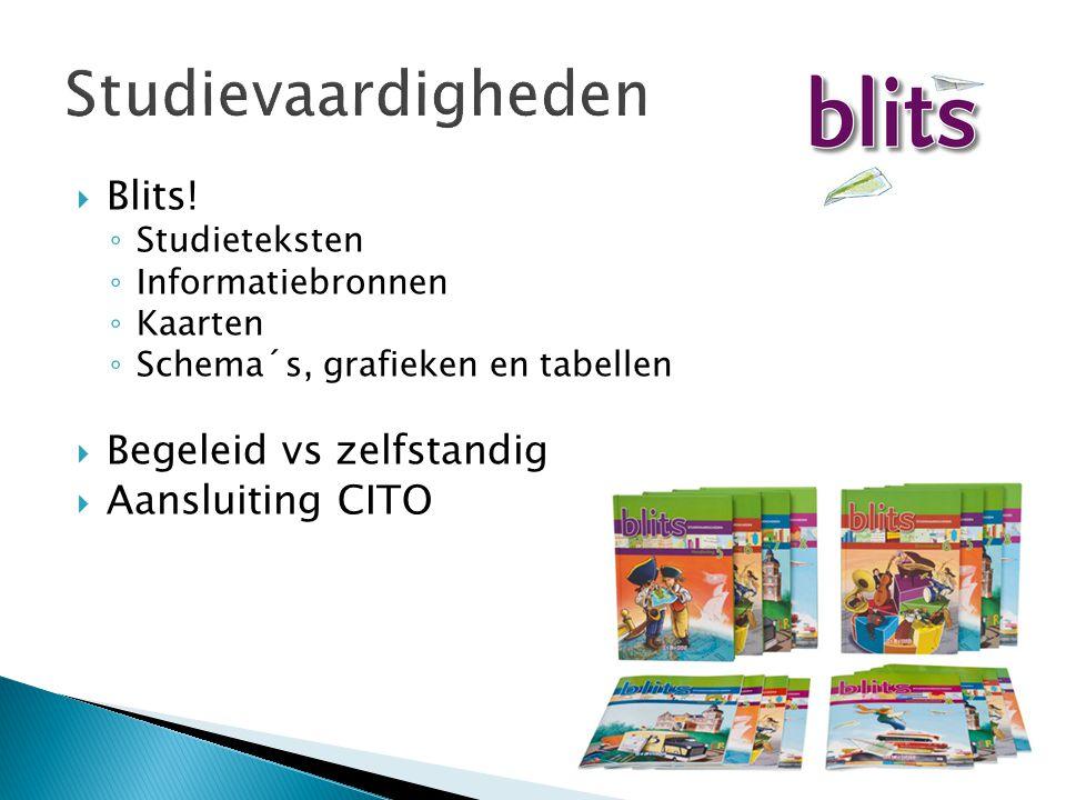 Studievaardigheden Blits! Begeleid vs zelfstandig Aansluiting CITO