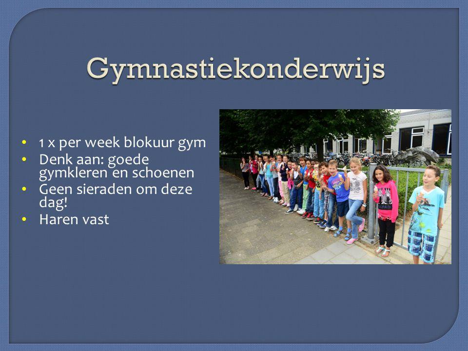 Gymnastiekonderwijs 1 x per week blokuur gym