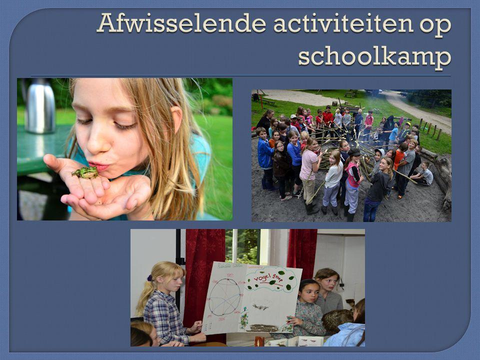 Afwisselende activiteiten op schoolkamp