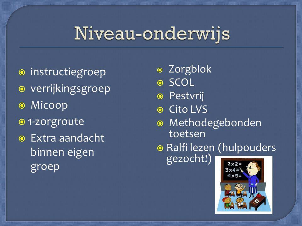 Niveau-onderwijs instructiegroep verrijkingsgroep Micoop 1-zorgroute