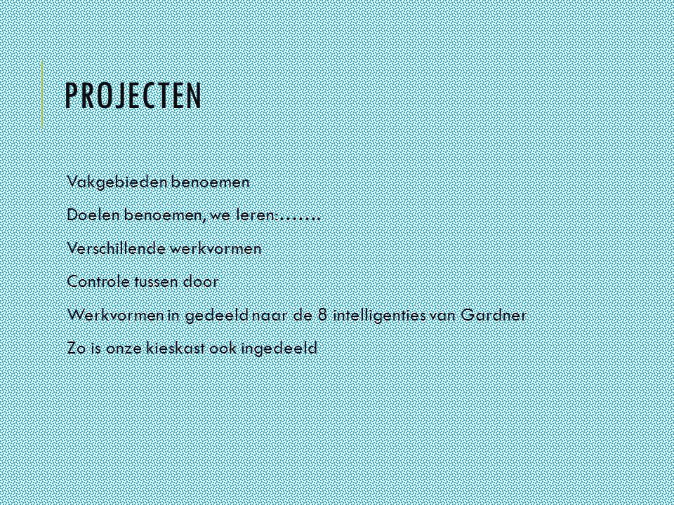 Projecten Vakgebieden benoemen Doelen benoemen, we leren:…….