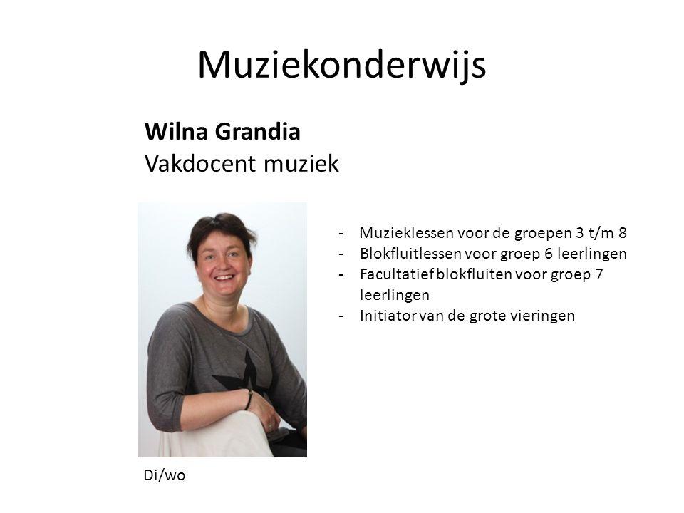 Muziekonderwijs Wilna Grandia Vakdocent muziek