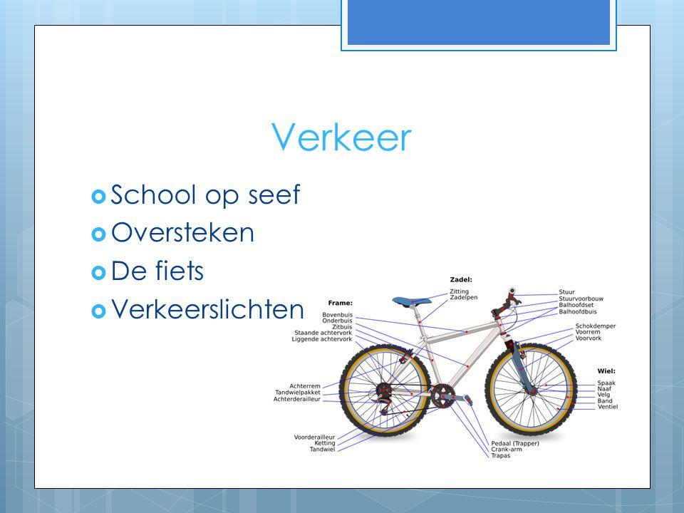 Verkeer School op seef Oversteken De fiets Verkeerslichten