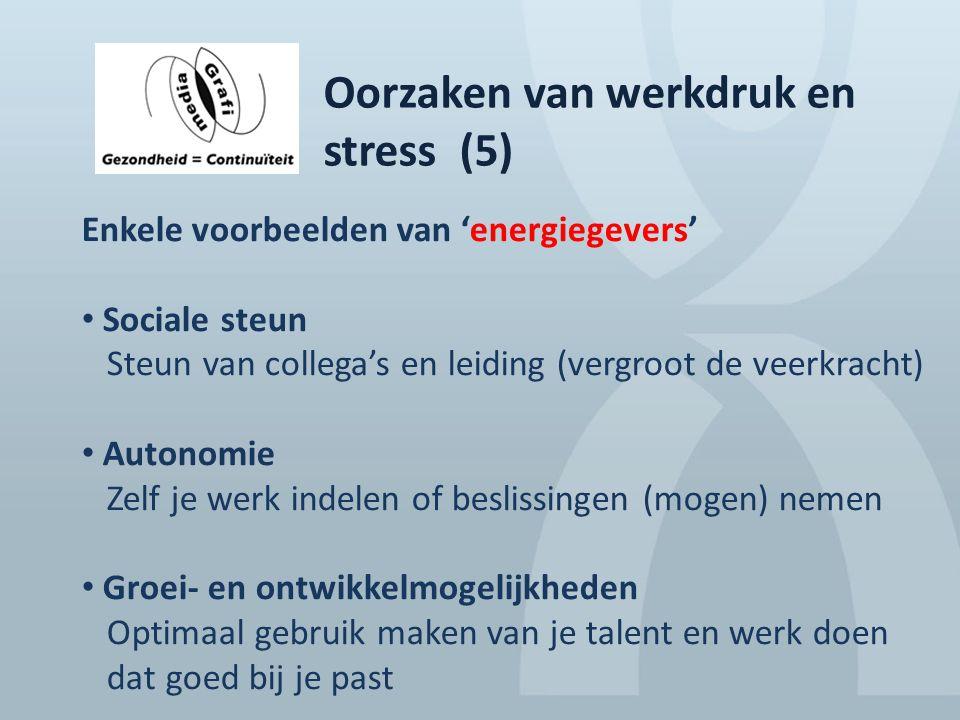 Oorzaken van werkdruk en stress (5)