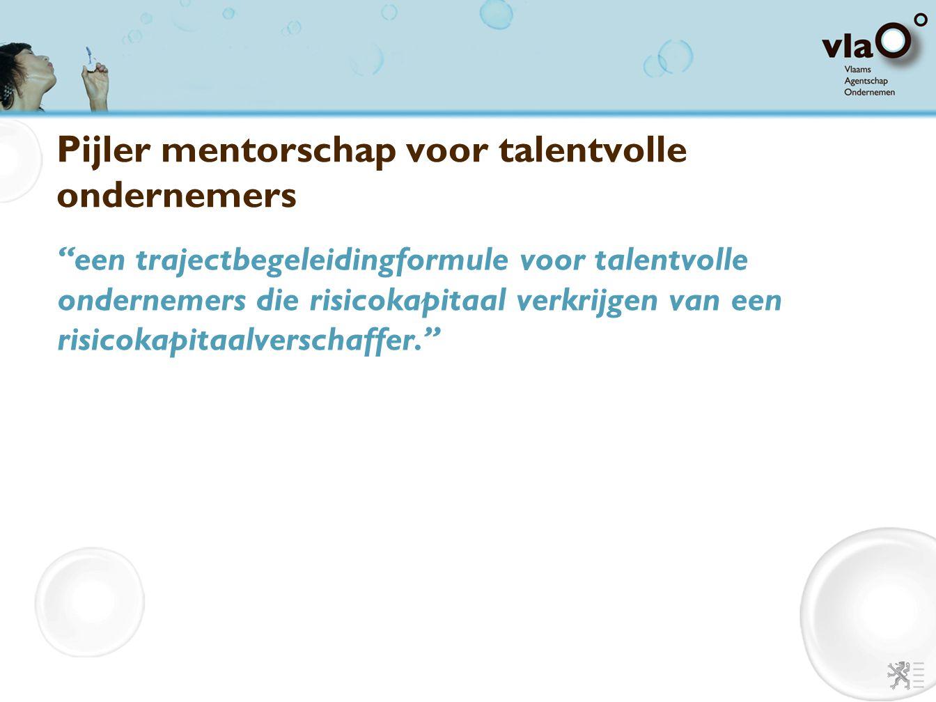 Pijler mentorschap voor talentvolle ondernemers