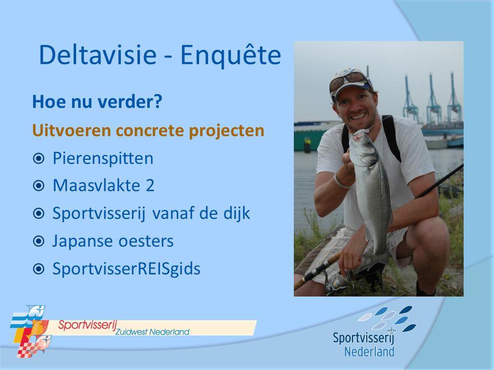 Deltavisie - Enquête Hoe nu verder Uitvoeren concrete projecten