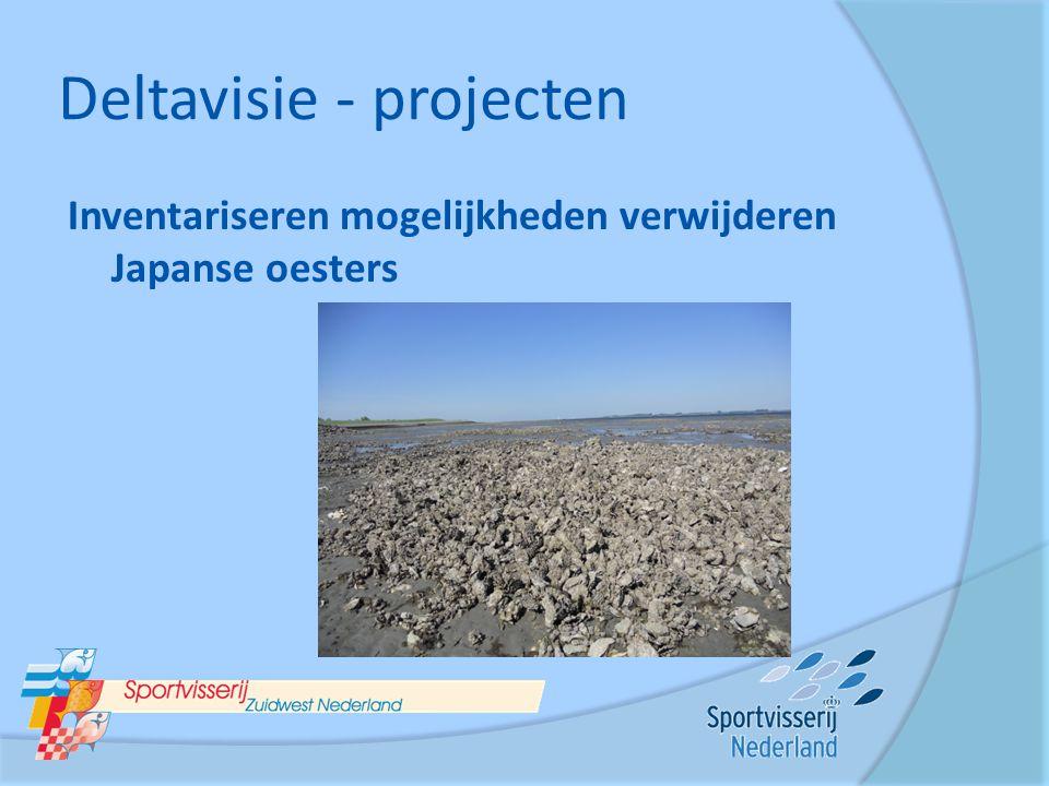 Deltavisie - projecten