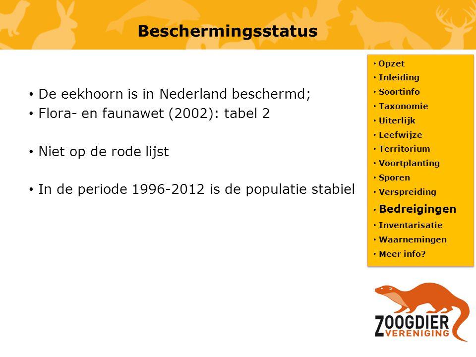 Beschermingsstatus De eekhoorn is in Nederland beschermd;