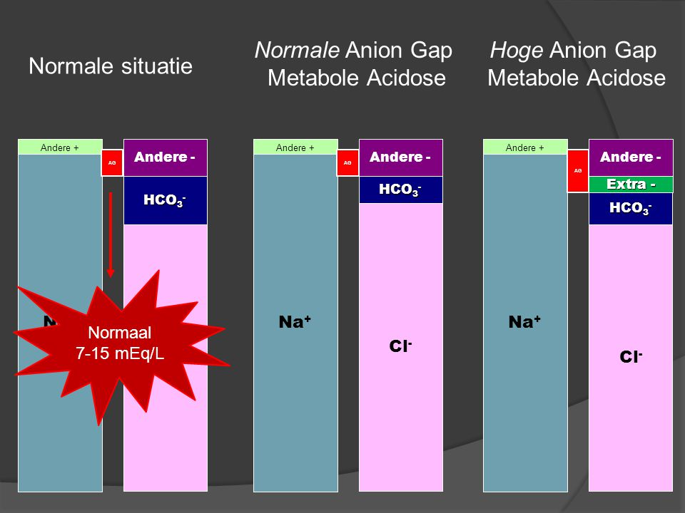 Normale Anion Gap Metabole Acidose Hoge Anion Gap Metabole Acidose