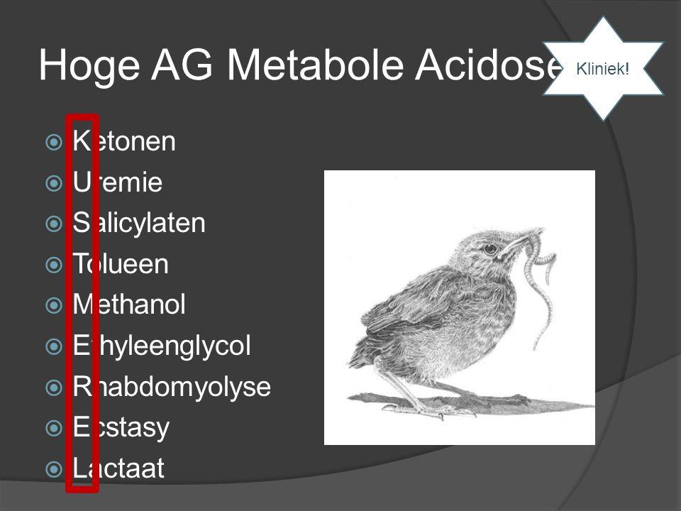 Hoge AG Metabole Acidose