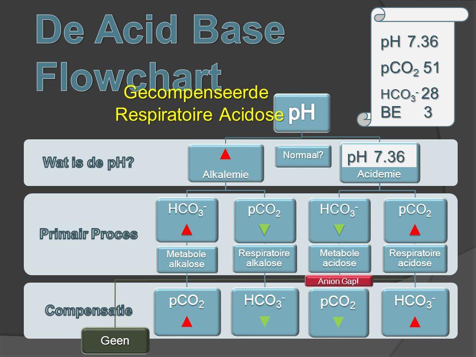 Respiratoire alkalose