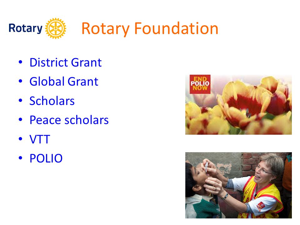 Rotary Foundation District Grant Global Grant Scholars Peace scholars