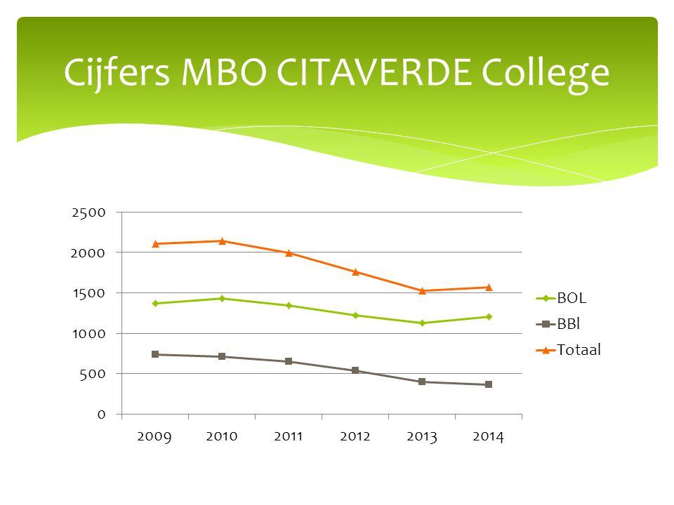 Cijfers MBO CITAVERDE College