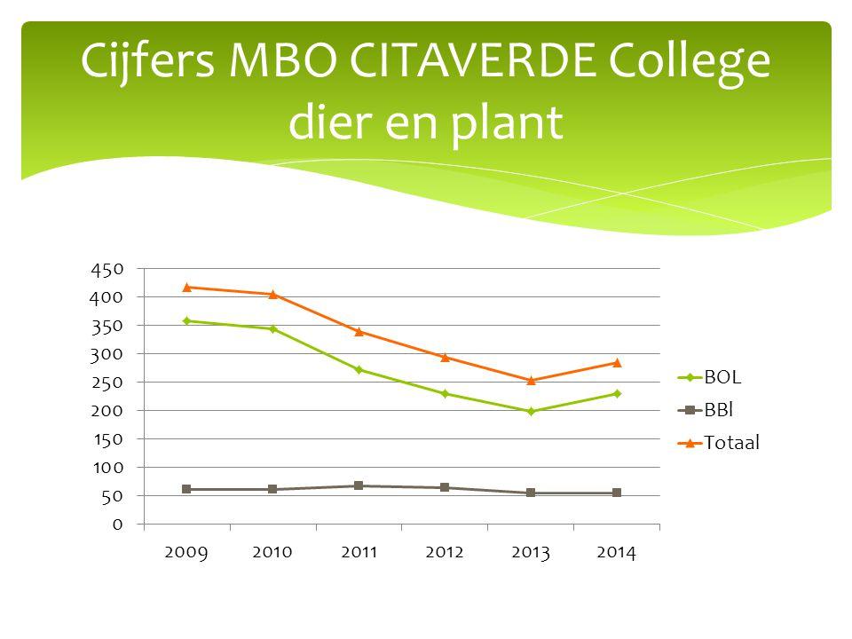 Cijfers MBO CITAVERDE College dier en plant