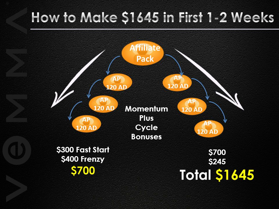 Total $1645 How to Make $1645 in First 1-2 Weeks $700 Affiliate Pack