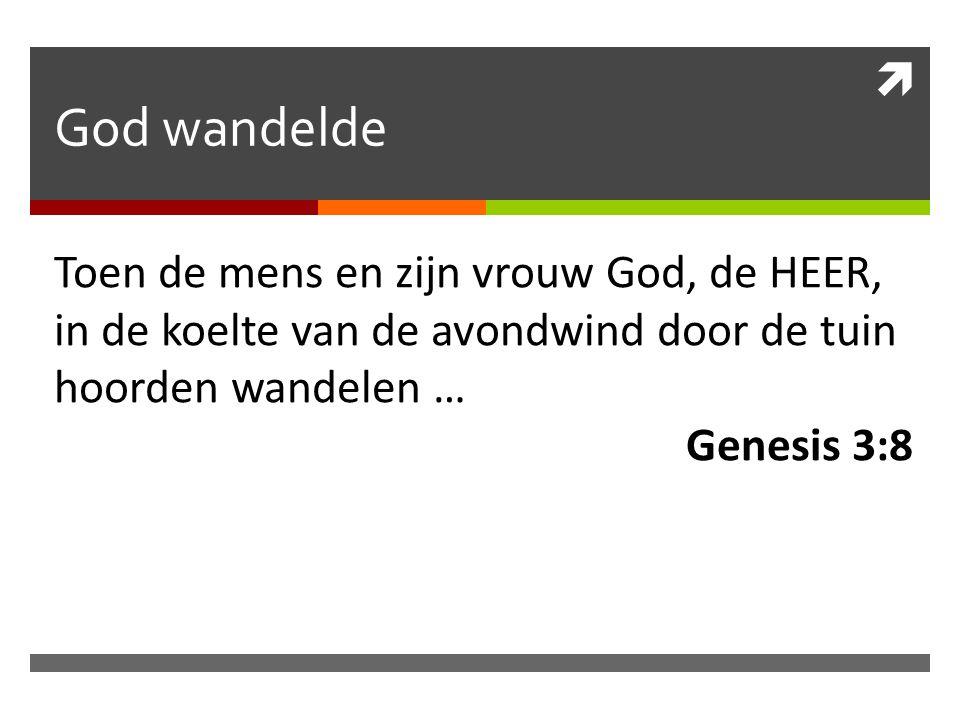 God wandelde Toen de mens en zijn vrouw God, de HEER, in de koelte van de avondwind door de tuin hoorden wandelen …