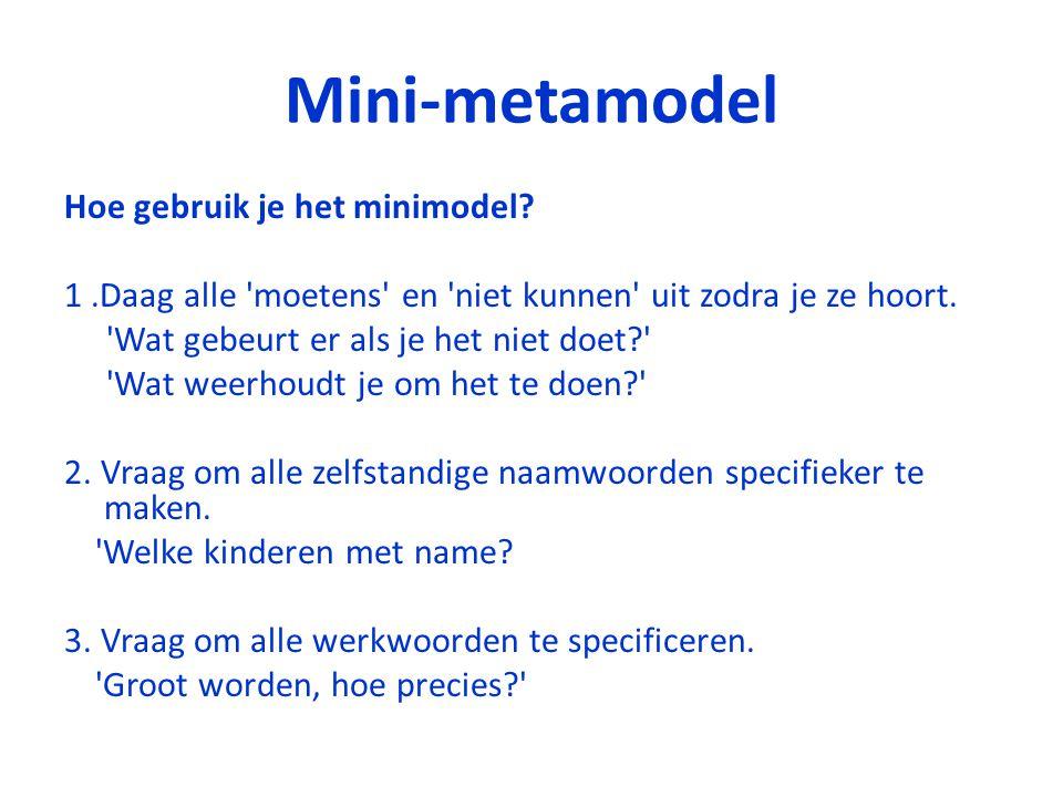 Mini-metamodel Hoe gebruik je het minimodel