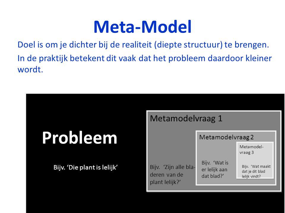 Meta-Model Doel is om je dichter bij de realiteit (diepte structuur) te brengen.