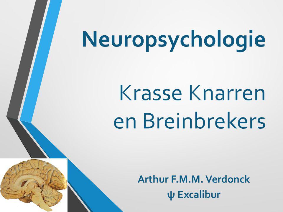 Neuropsychologie Krasse Knarren en Breinbrekers