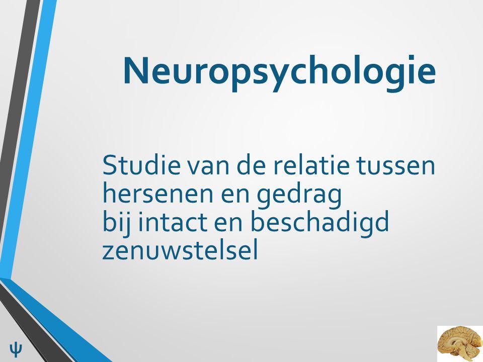 Neuropsychologie Studie van de relatie tussen hersenen en gedrag bij intact en beschadigd zenuwstelsel.
