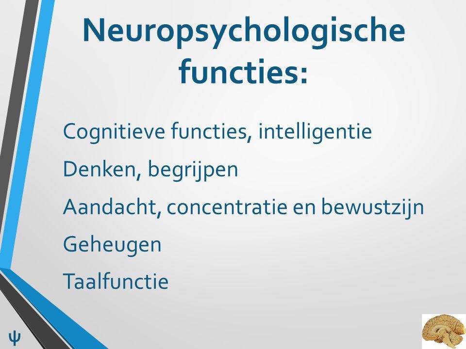 Neuropsychologische functies: