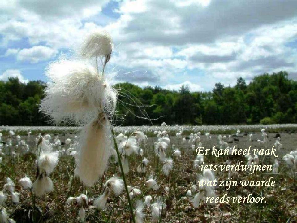 Er kan heel vaak iets verdwijnen wat zijn waarde reeds verloor.